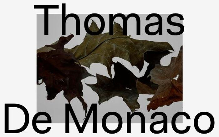 Screenshot of Thomasdemonaco website