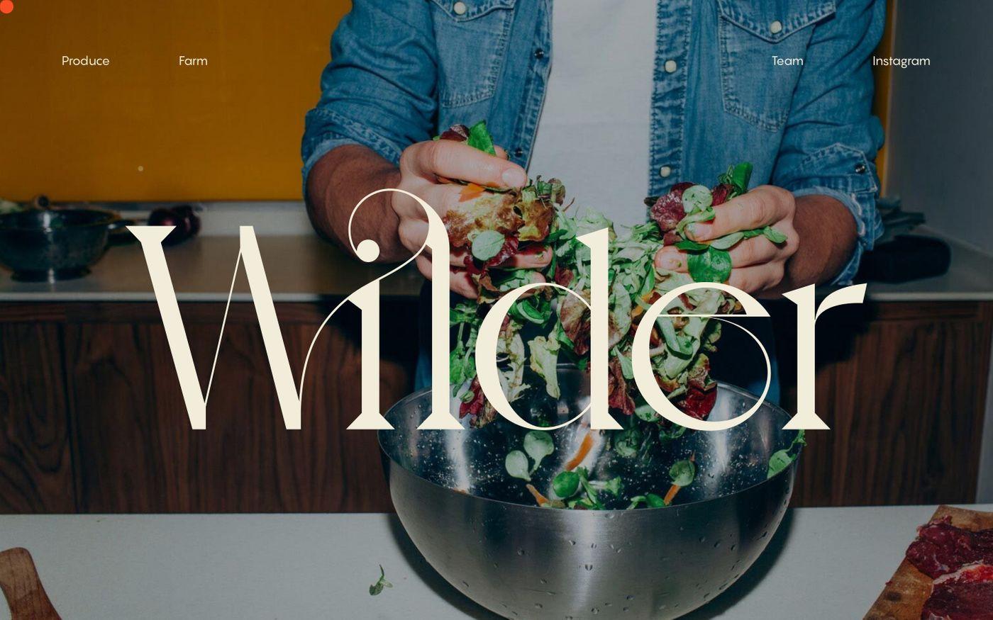 Screenshot of Wilder Fields website