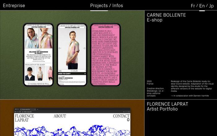 Screenshot of Entreprise website