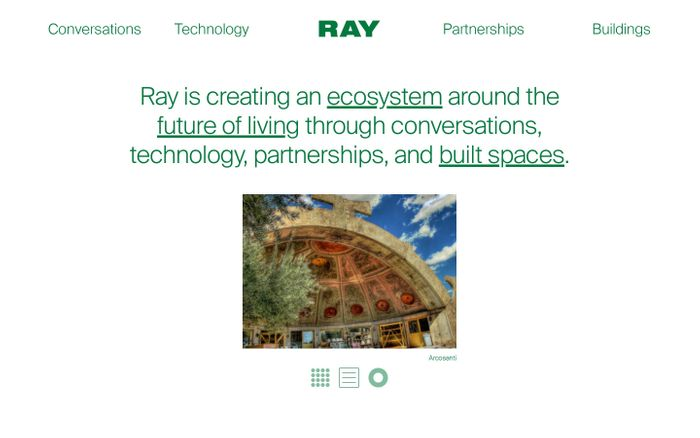Screenshot of Ray