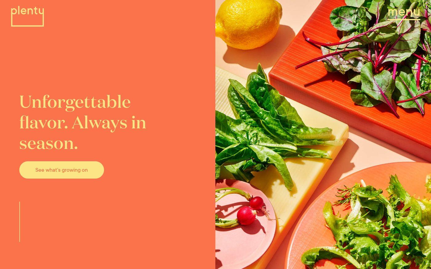 Screenshot of  Plenty website