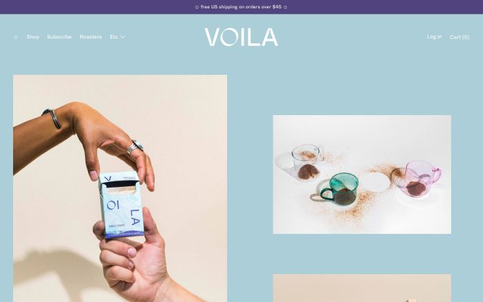 Screenshot of Voila website