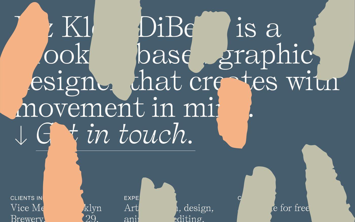 Screenshot of Liz Klein DiBello website