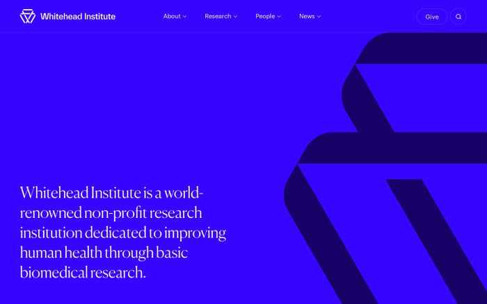Screenshot of Whitehead Institute website