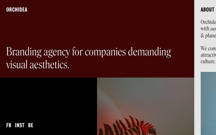Screenshot of Orchidea Agency website