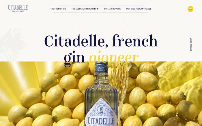Screenshot of Citadelle gin website