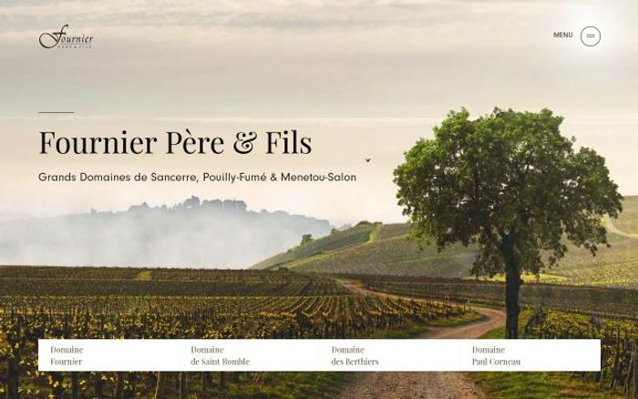 Screenshot of Fournier-pere-fils website