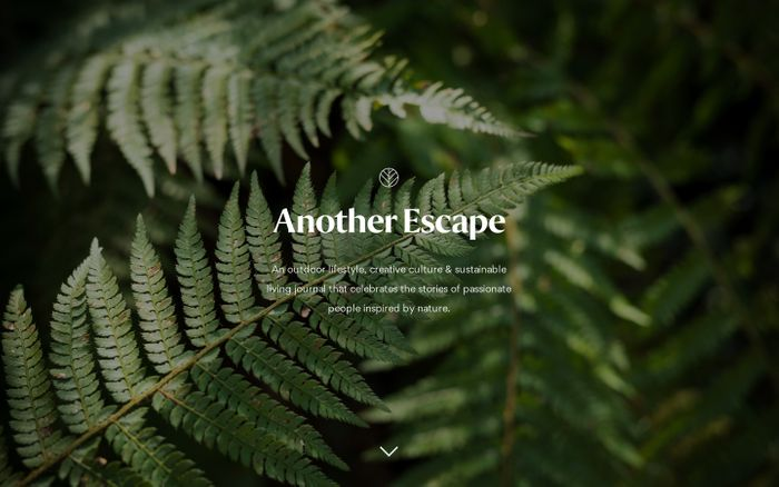 Screenshot of Another Escape | Inspired by nature
