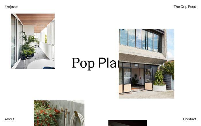 Screenshot of Pop Plant