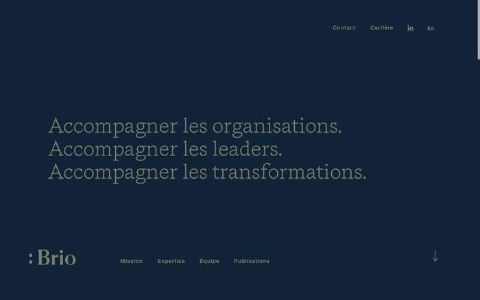 Screenshot of Accueil - Brio Conseils