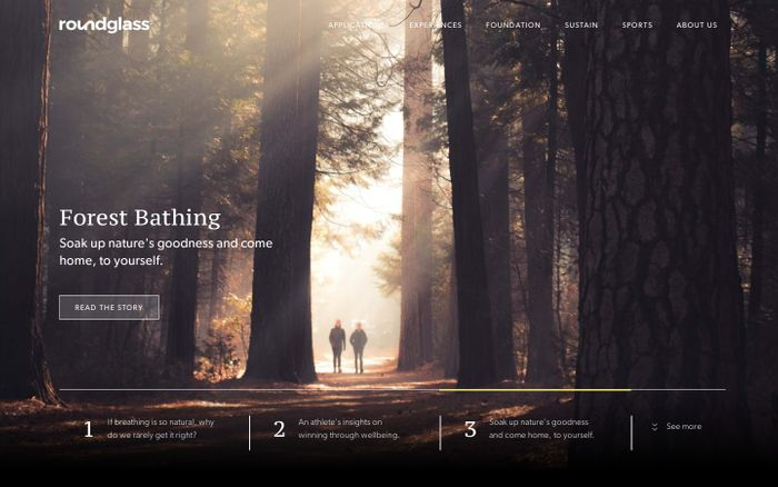 Screenshot of RoundGlass : Enabling Holistic Wellbeing & Meaningful Living