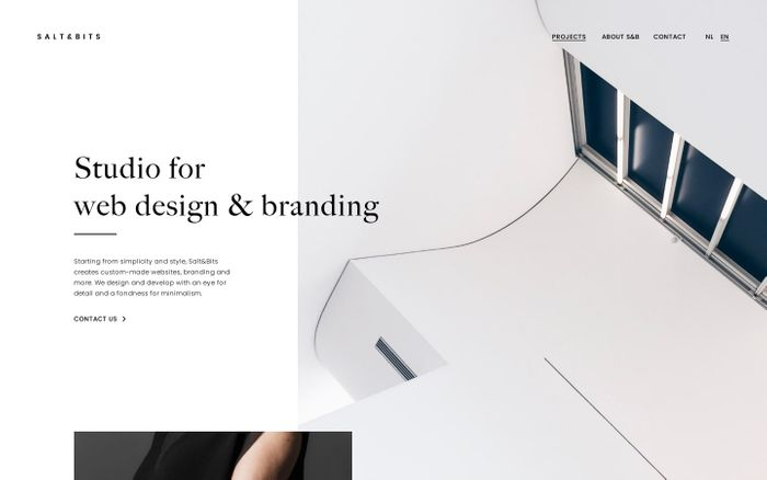 Screenshot of Salt&Bits | Studio for web design & branding