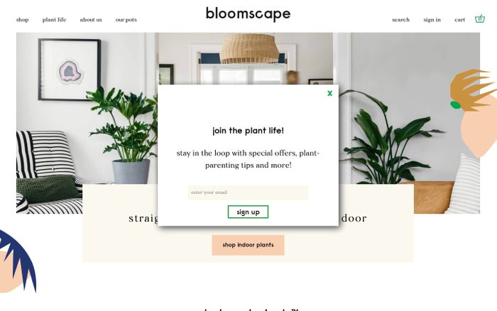 Screenshot of Bloomscape | Living room ready plants delivered to your door