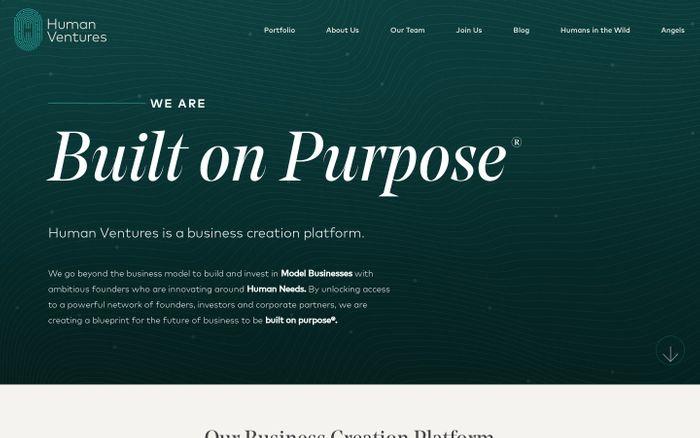 Screenshot of Human Ventures website