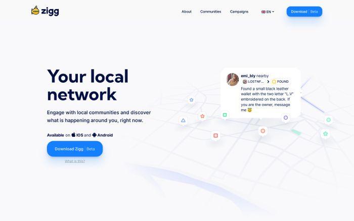 Screenshot of Zigg website