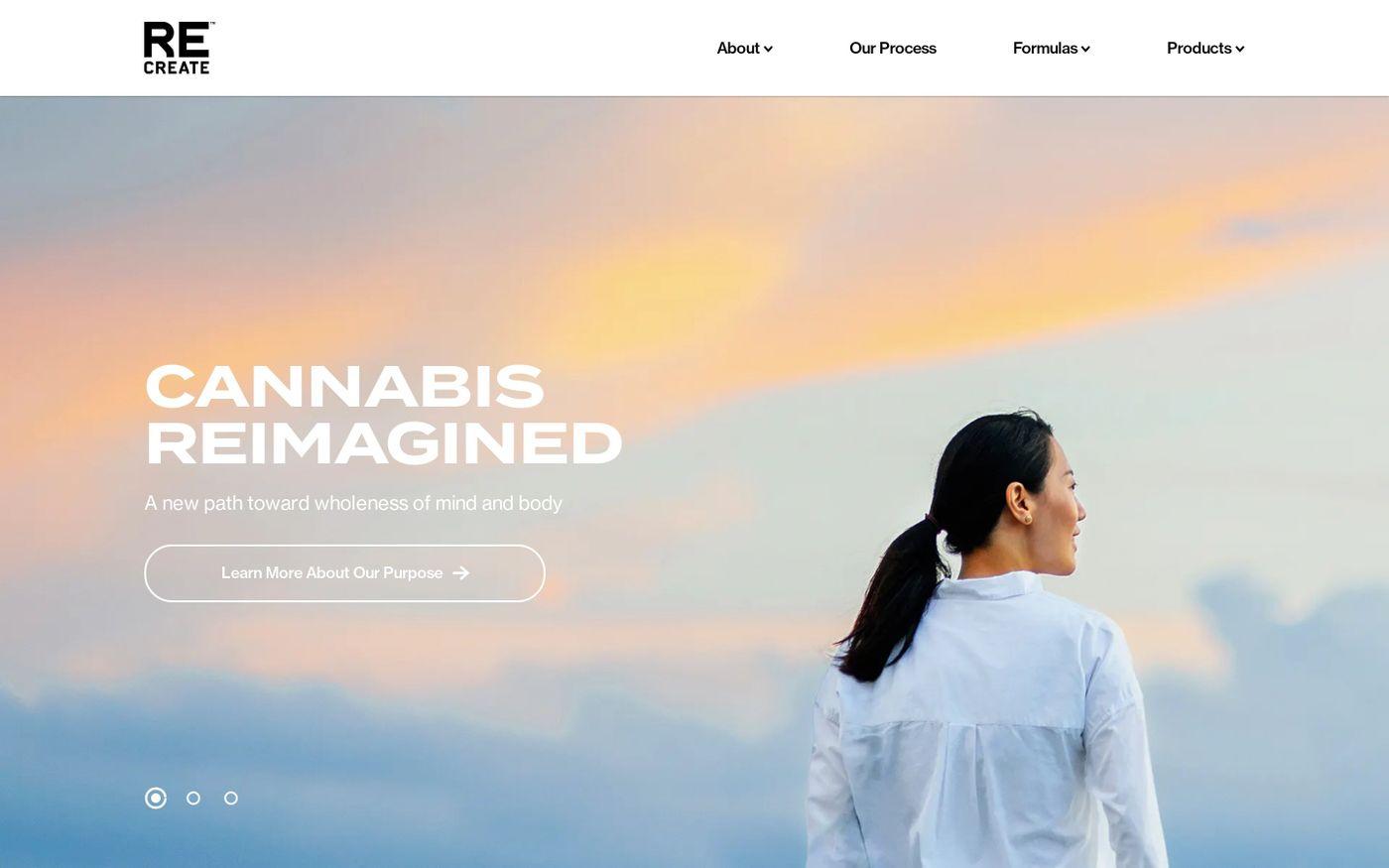 Screenshot of ReCreate website