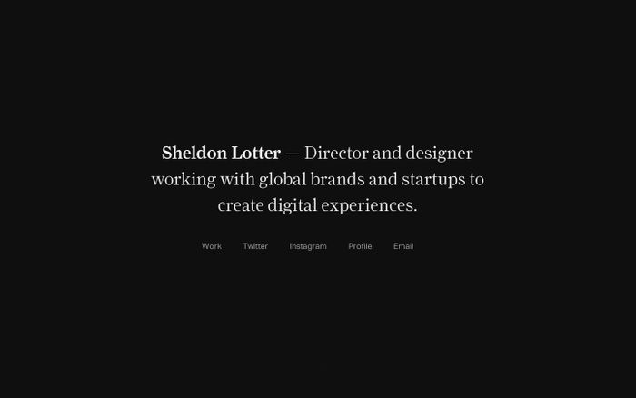 Screenshot of Sheldon Lotter — Direction + Design