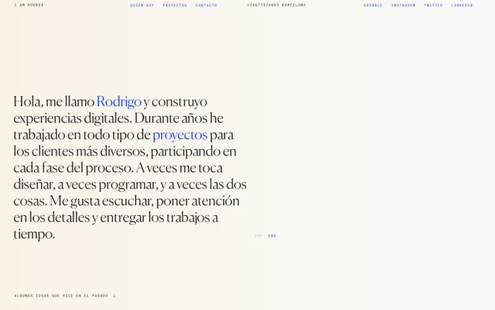 Screenshot of Rodrigo Núñez website