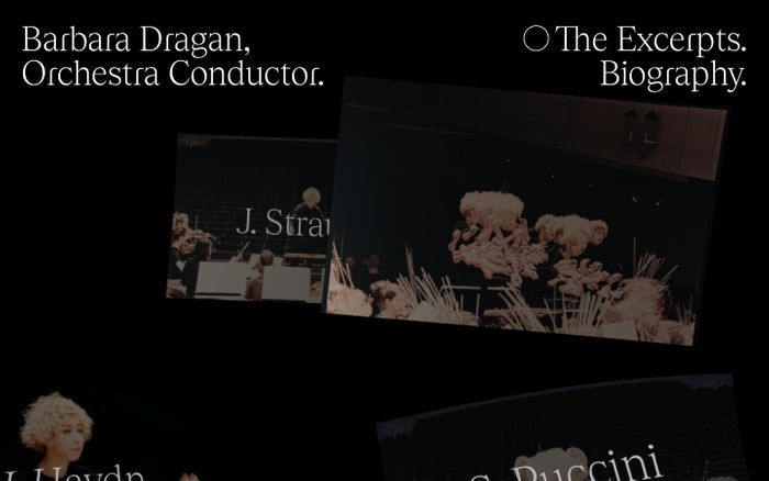 Screenshot of Barbara Dragan website
