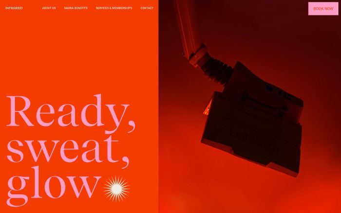 Screenshot of Infrared website