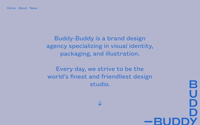Screenshot of Buddy-Buddy | A Minneapolis Branding Agency & Design Studio