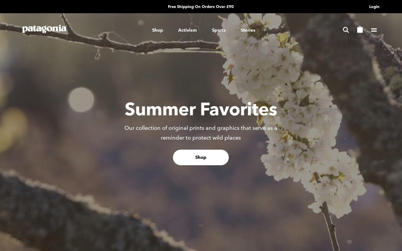 Screenshot of Patagonia website
