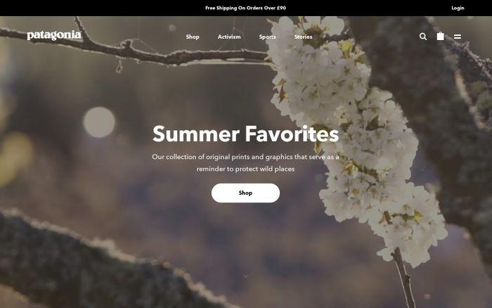 Screenshot of Patagonia Outdoor Clothing & Gear