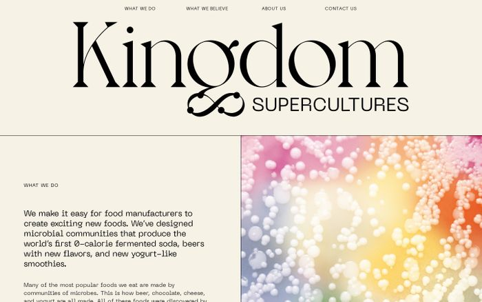Screenshot of Kingdom Supercultures website