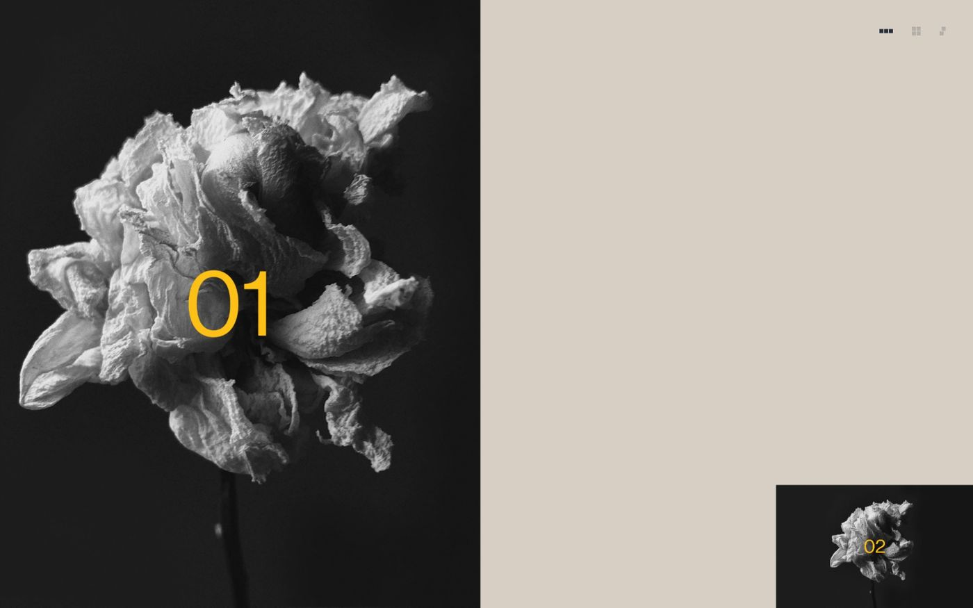 Screenshot of Book of Flowers website