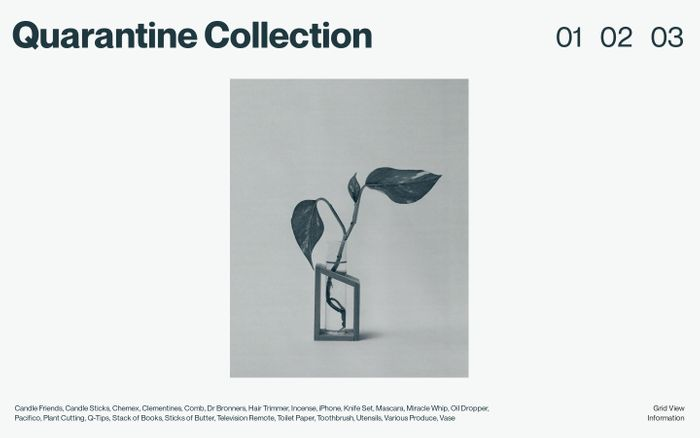 Screenshot of Quarantine Collection website