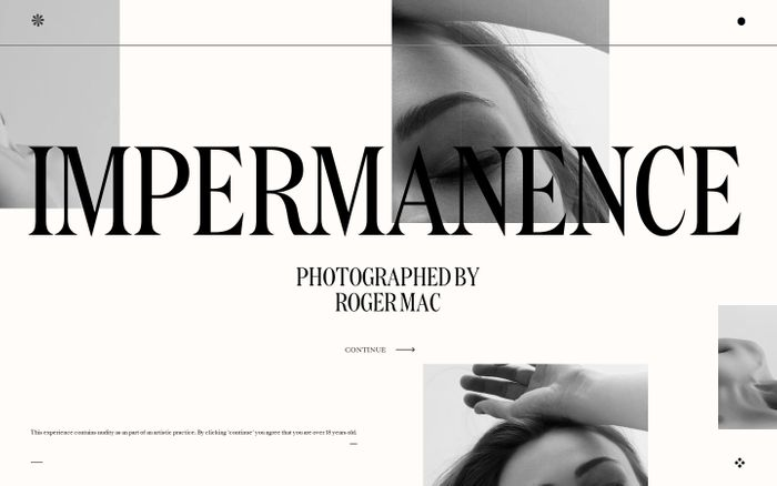 Screenshot of Impermanence website