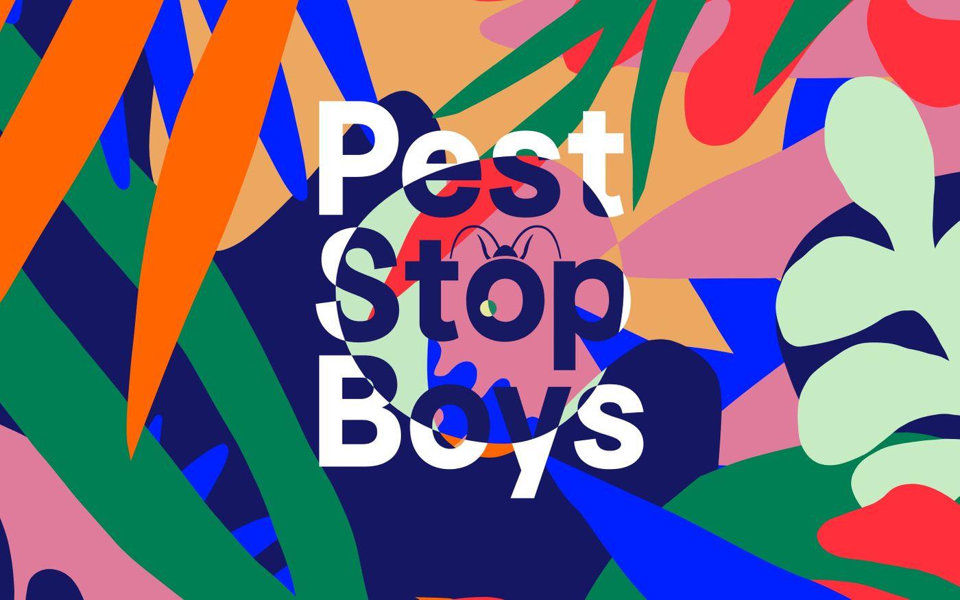 Screenshot of Pest Stop Boys - Pest Control in South East England website