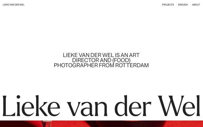 Screenshot of Lieke van der Wel website