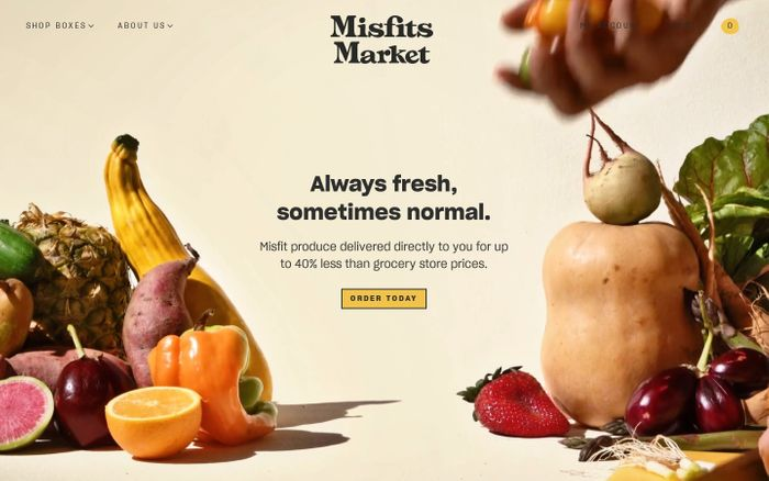 Screenshot of Misfits Market website
