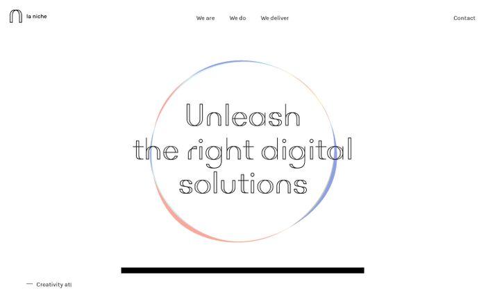 Screenshot of Unleash the right digital solutions - La niche