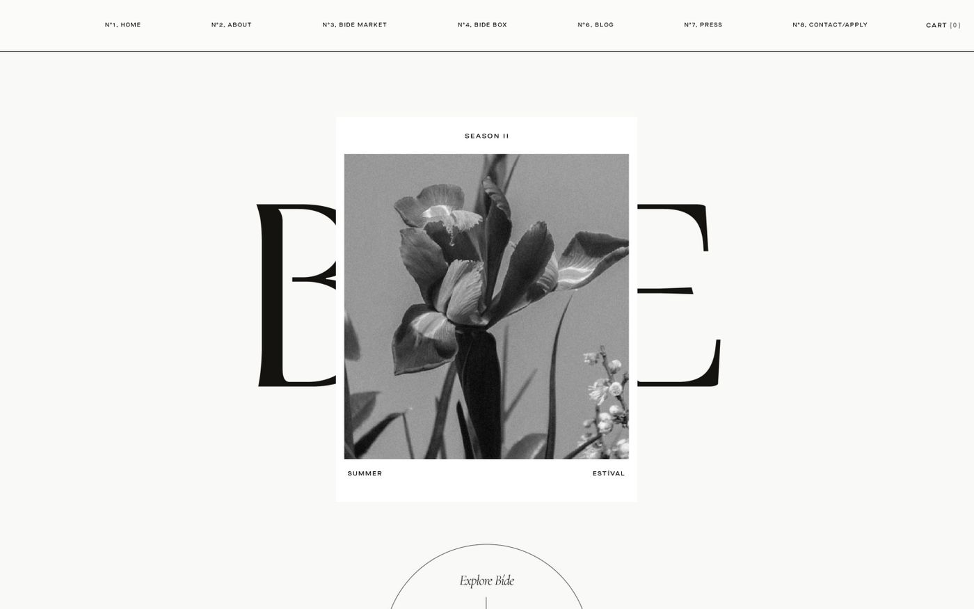 Screenshot of BIDE website