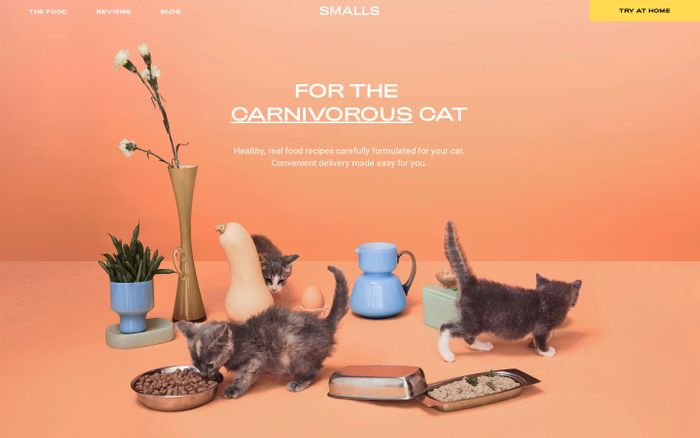 Screenshot of Smalls: Real Food for Cats – smallsforsmalls