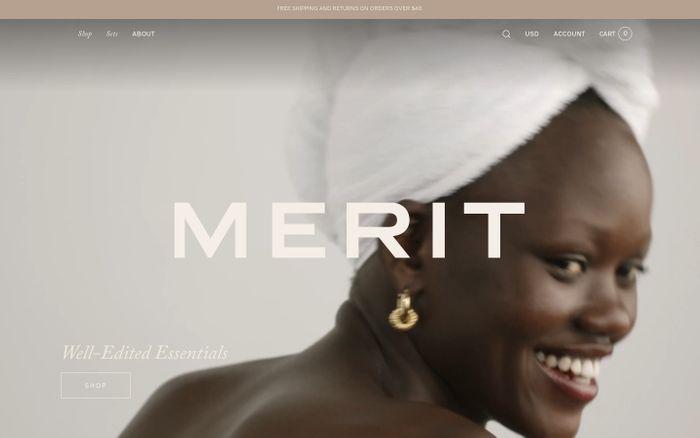 Screenshot of Merit website
