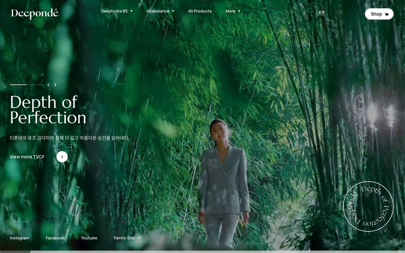 Screenshot of Deeponde website