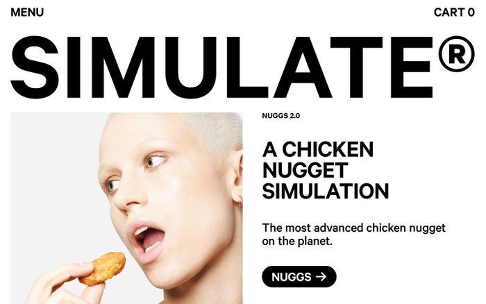 Screenshot of Simulate website