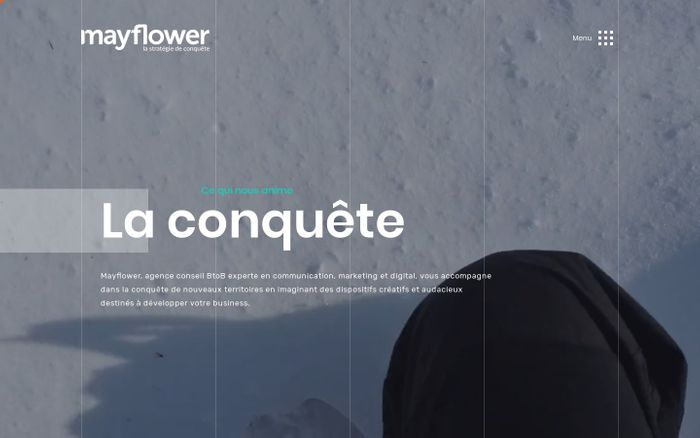 Screenshot of Mayflower, agence conseil en marketing, digital, et communication Lyon