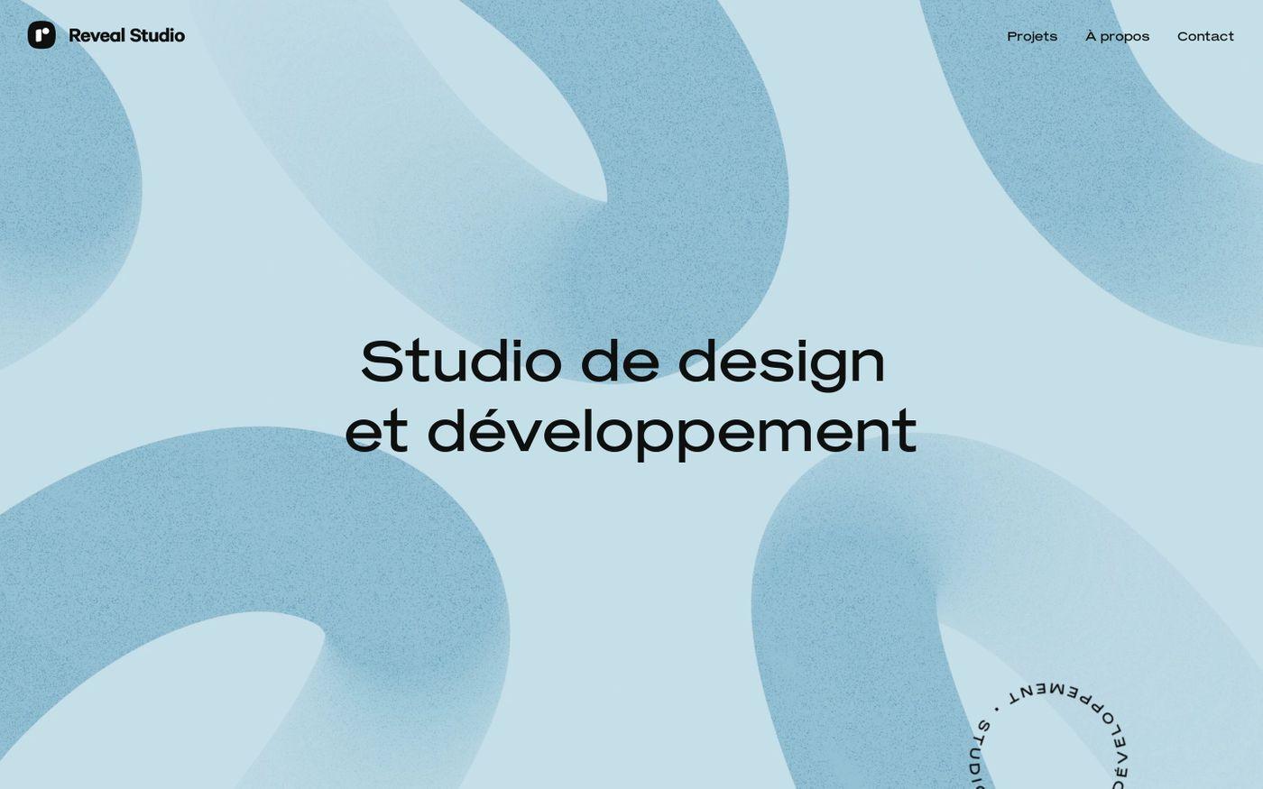Screenshot of Reveal Studio website