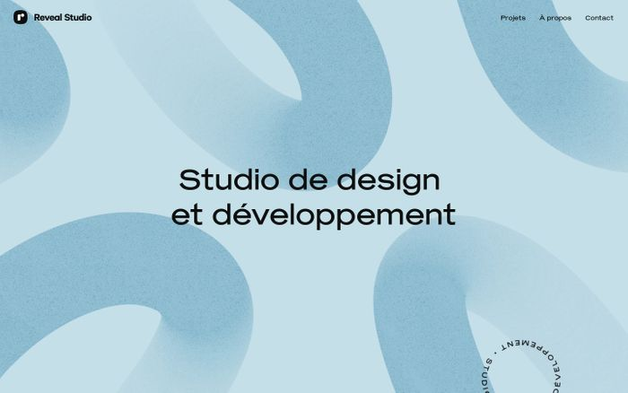 Screenshot of Reveal Studio website