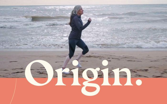 Screenshot of  Origin website