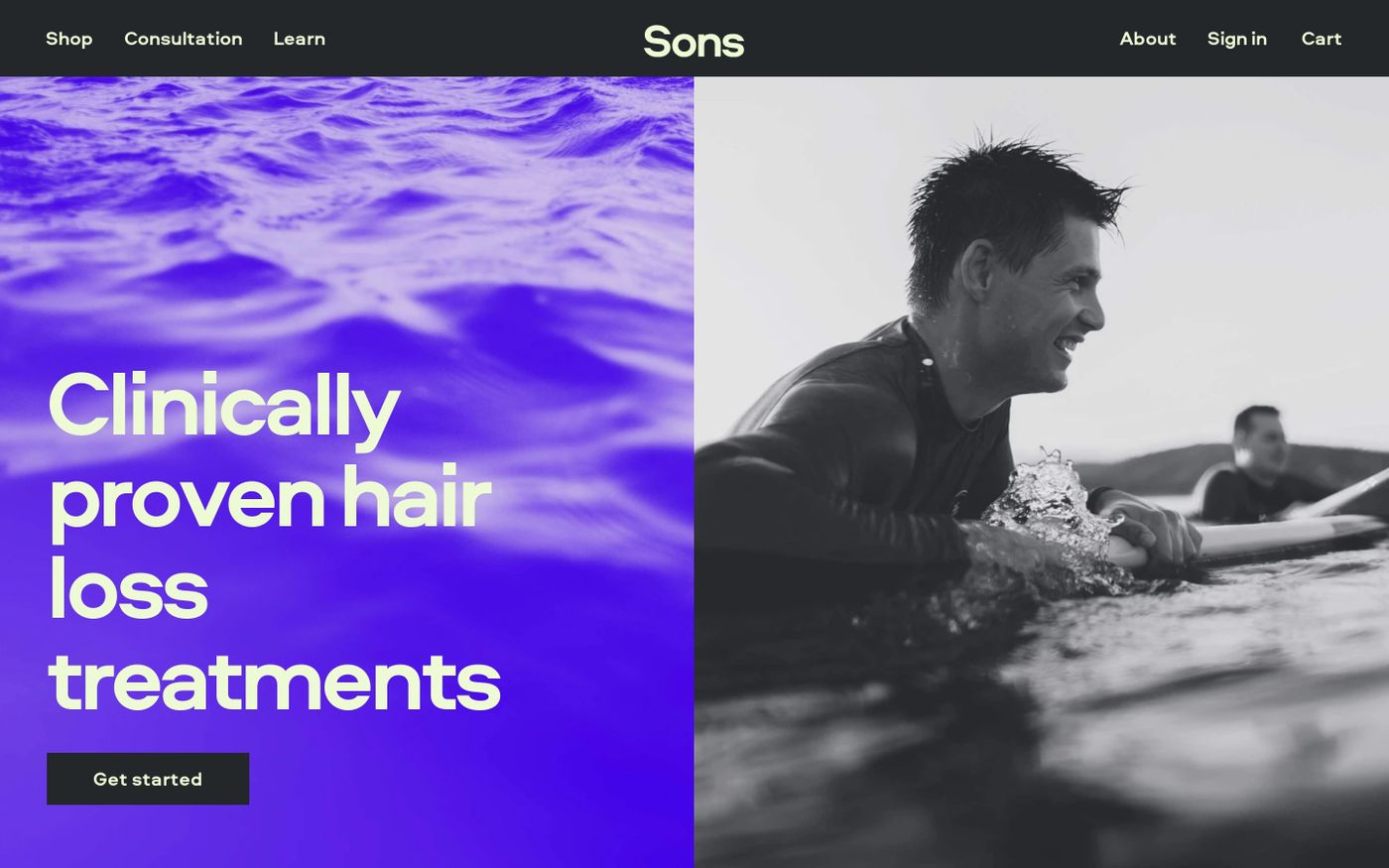 Screenshot of Sons website