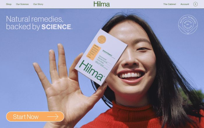 Screenshot of Hilma website