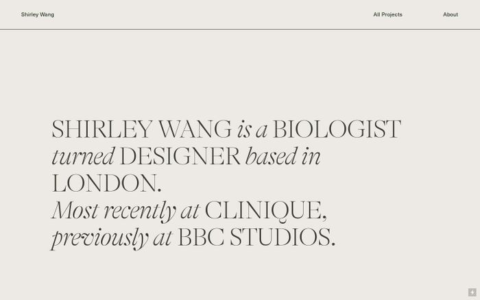 Screenshot of Shirley Wang website