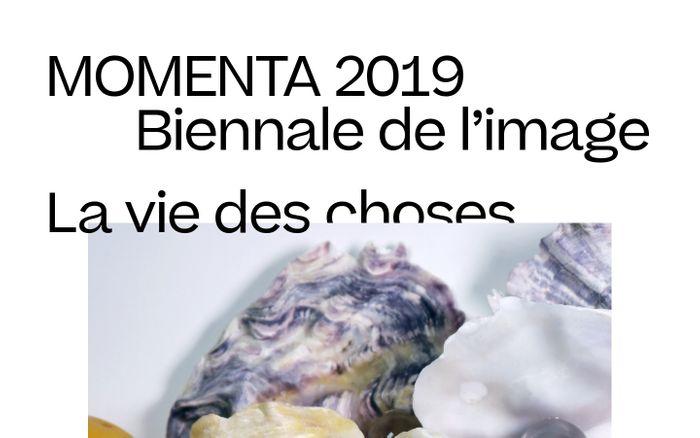 Screenshot of Momenta 2019
