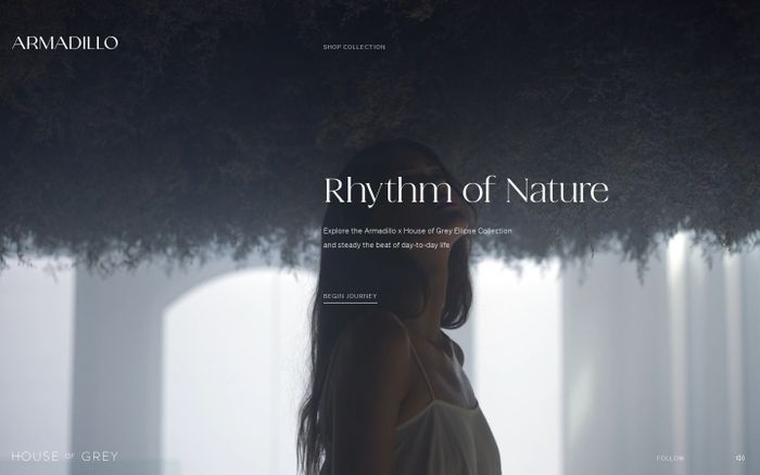 Screenshot of Rhythm of nature by Armadillo website