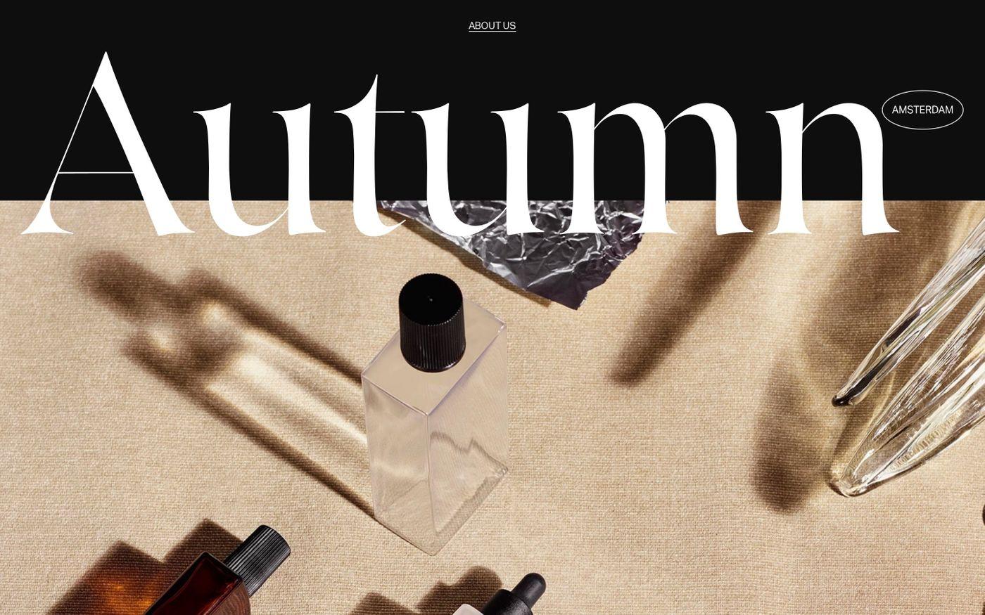 Screenshot of Autumn website